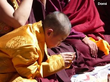 La Chine sac au dos (35) Aux confins du Tibet (西藏): Sichuan (四川) Rencontre festive avec un jeune Lama (喇嘛)    Lama_114