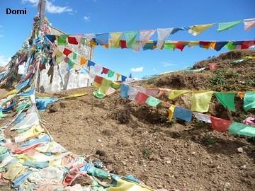 La Chine sac au dos (35) Aux confins du Tibet (西藏): Sichuan (四川) Rencontre festive avec un jeune Lama (喇嘛)    Lama_211