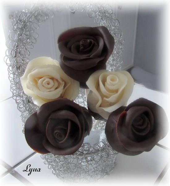 Roses de fraises en chocolat Fraise15