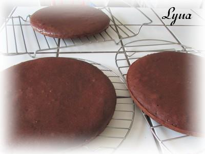 Gâteau au chocolat et mousse de chocolat blanc Gyteau12