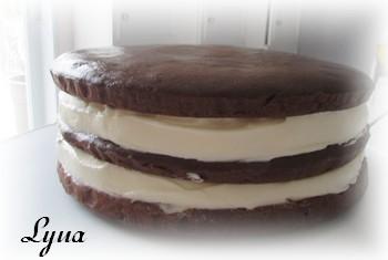 Gâteau au chocolat et mousse de chocolat blanc Gyteau13