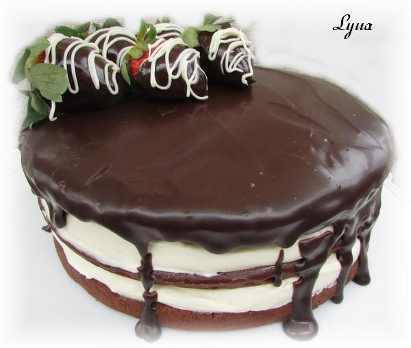 Gâteau au chocolat et mousse de chocolat blanc Gyteau15