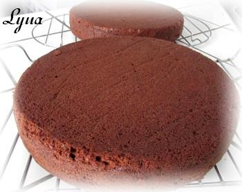 Gâteau étagé au chocolat et café Gyteau17