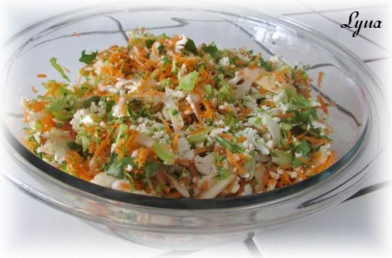 Salade de brocoli et chou-fleur émincés Salade15