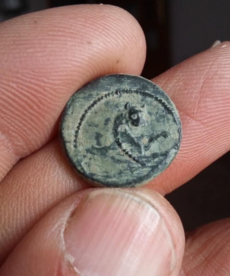 bronze séleucide pour Antiochos VI Dionysos Picsar12