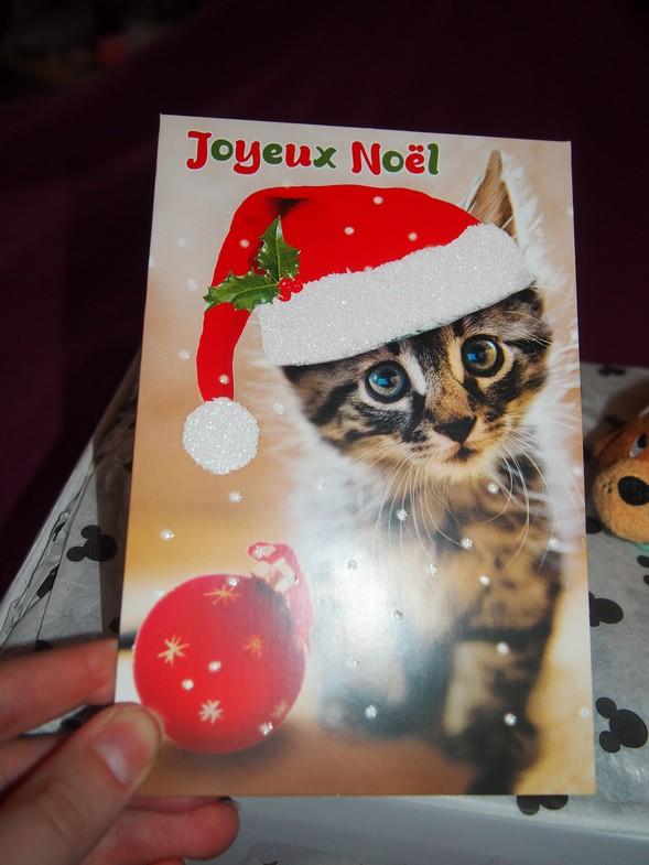 Père-Noël Surprise 2015 - Page 5 211
