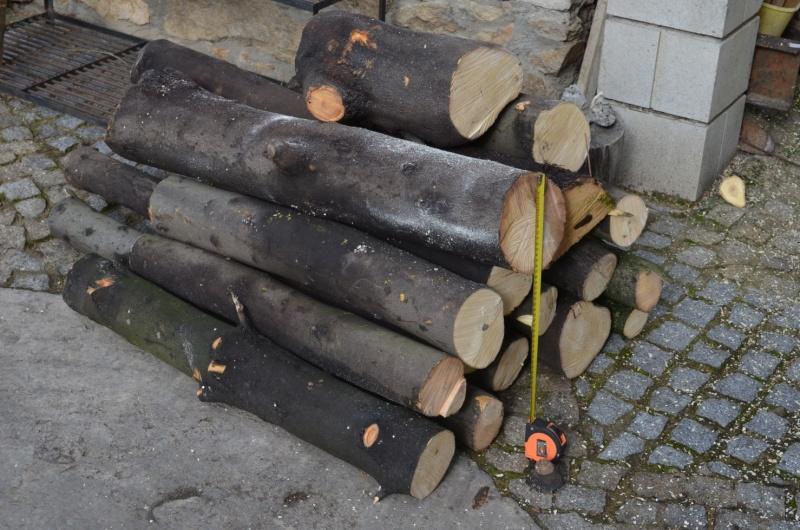 Bois Laurus nobilis quinenveut Laurie11