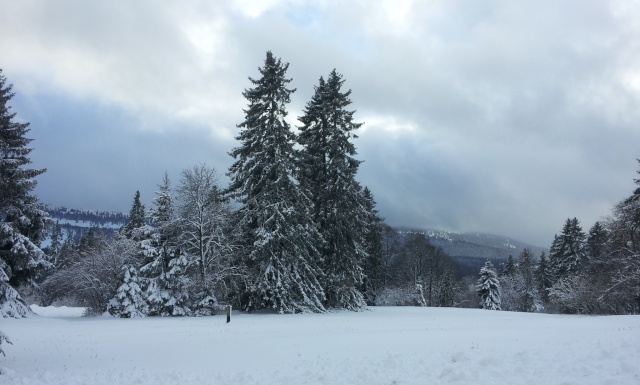 Mont Crosin le 4 jan 2015 20160112