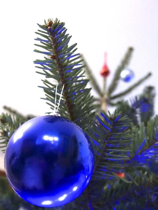Noël en bleu. P1000212