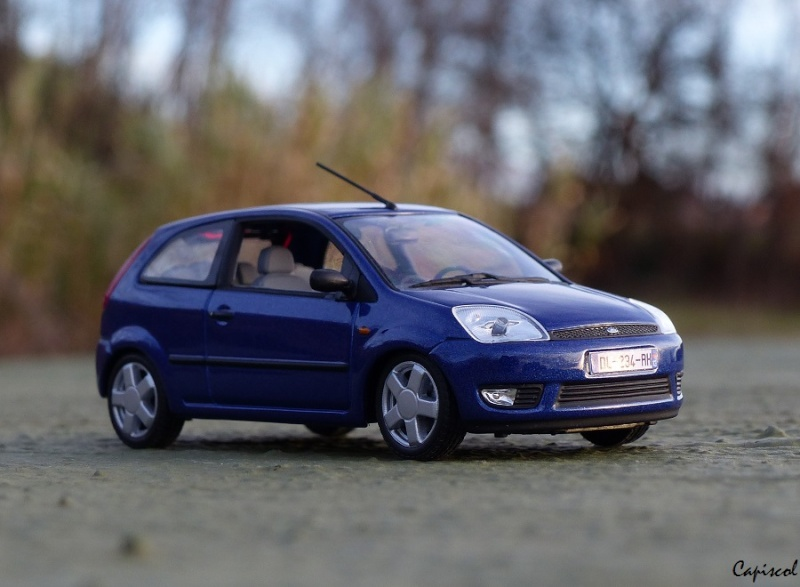 FORD P1020014