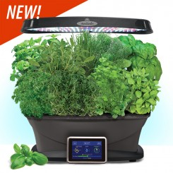 All I Want For Christmas....Holiday Garden Wish List! 01_agb10