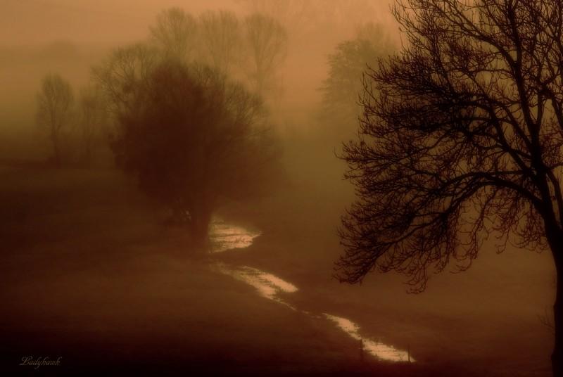 l'hiver en Lorraine Img_1512