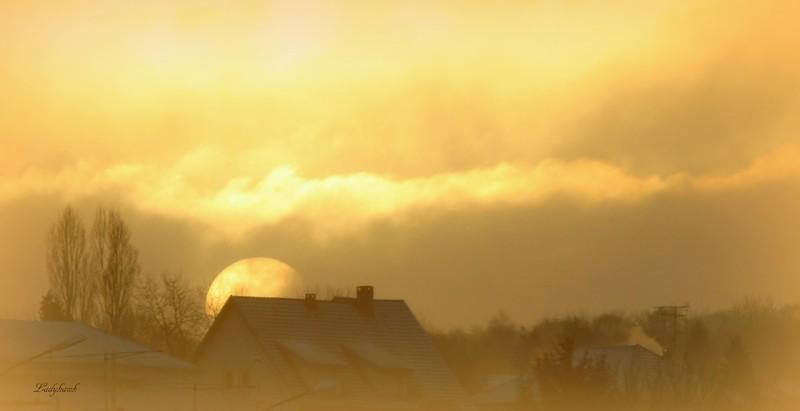 le soleil à ma porte Img_3610