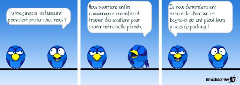 Les Birds - Page 14 14529710