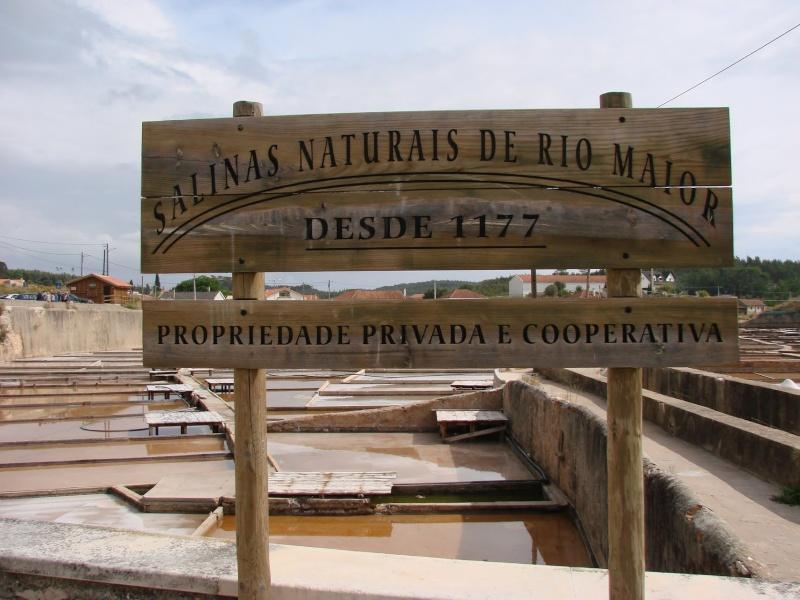Salinas de Rio Maior - Fonte da Bica, Portugal. 20005011