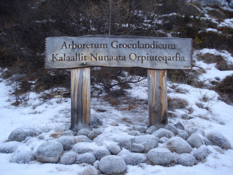 Traversée d'Qassiarsuk vers Narsarsuaq, Kujalleq au Groenland. 31431610