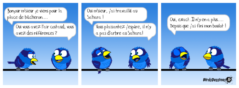 Les Birds - Page 14 Gavera10