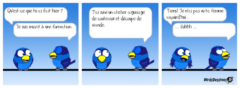 Les Birds - Page 14 Jojo8810