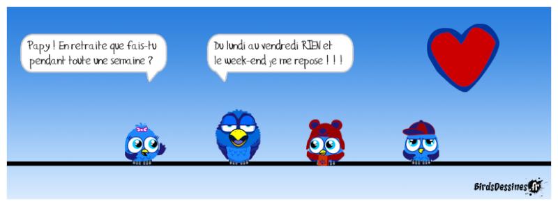 Les Birds - Page 14 Reguas11