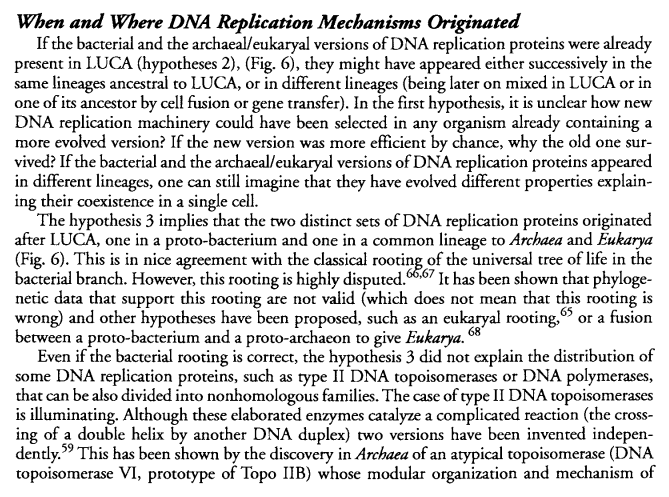 DNA replication of prokaryotes - Page 2 111110