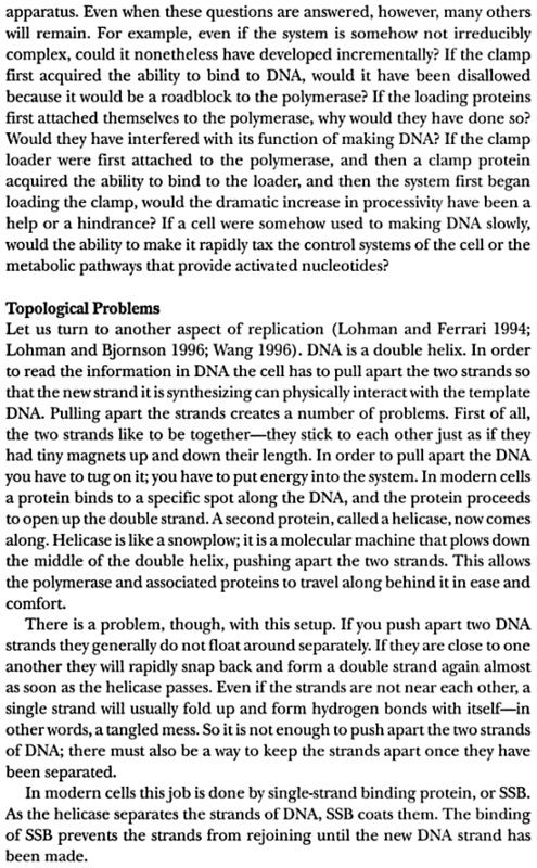 DNA replication of prokaryotes - Page 2 Dembsk16