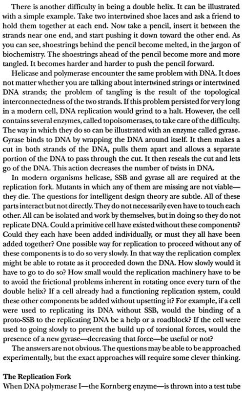 DNA replication of prokaryotes - Page 2 Dembsk17