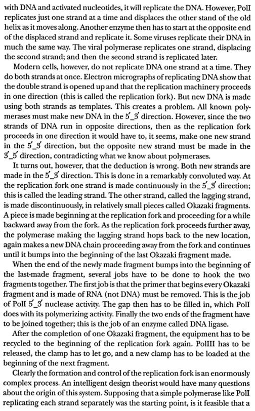 DNA replication of prokaryotes - Page 2 Dembsk18