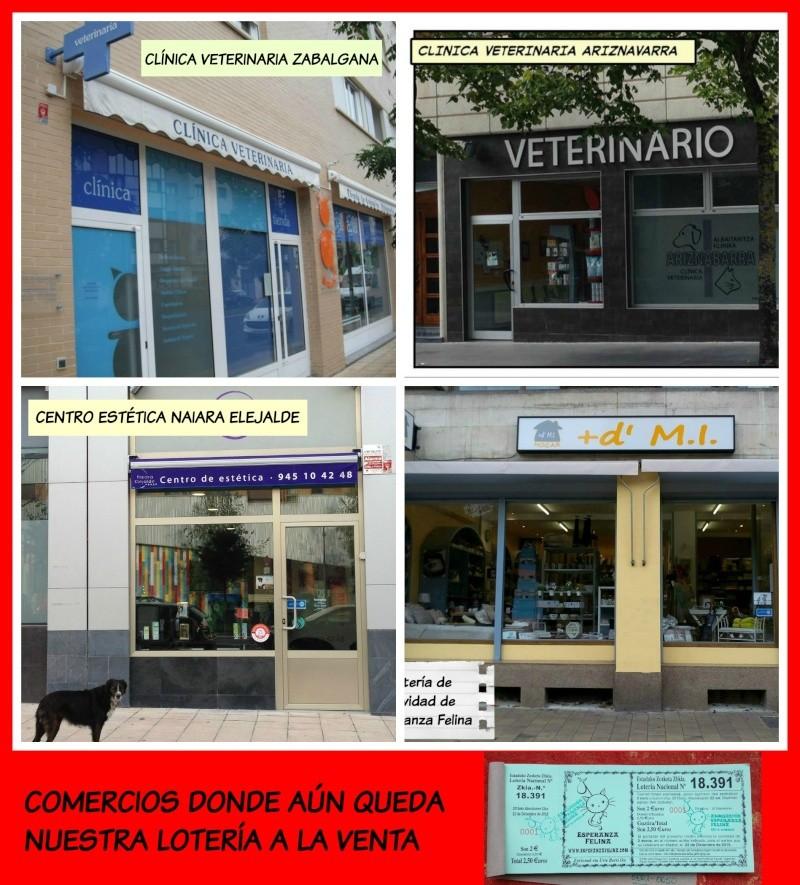 Loteria Navidad Esperanza Felina 2015 - Página 2 11220110