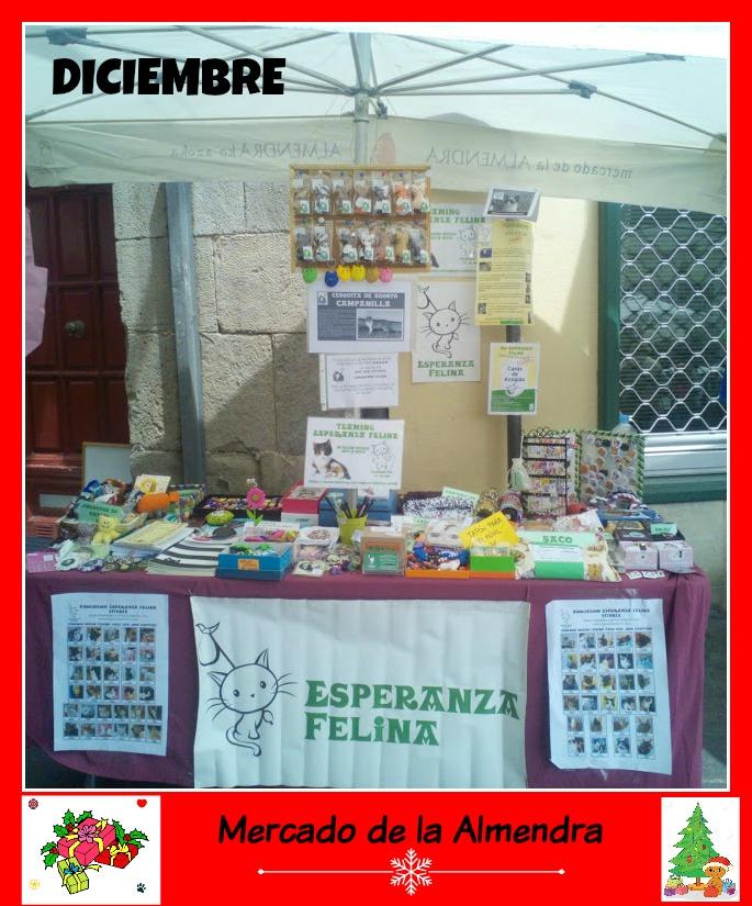 """Esperanza Felina en """"El Mercado de La Almendra"""" en Vitoria - Página 25 115"""