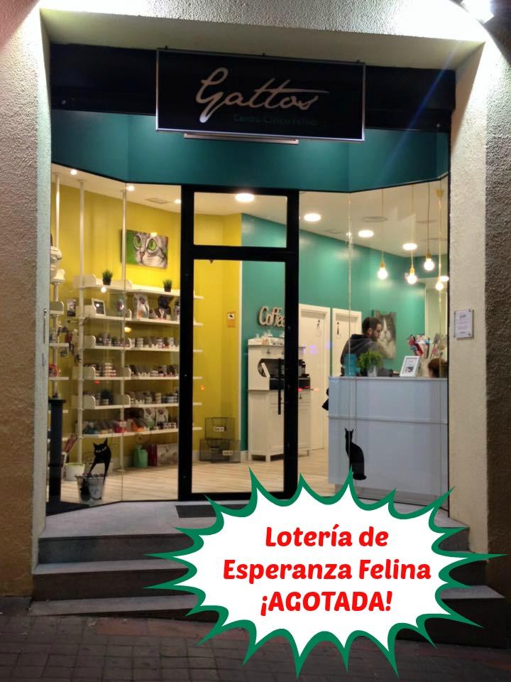 Loteria Navidad Esperanza Felina 2015 - Página 2 Agotad10