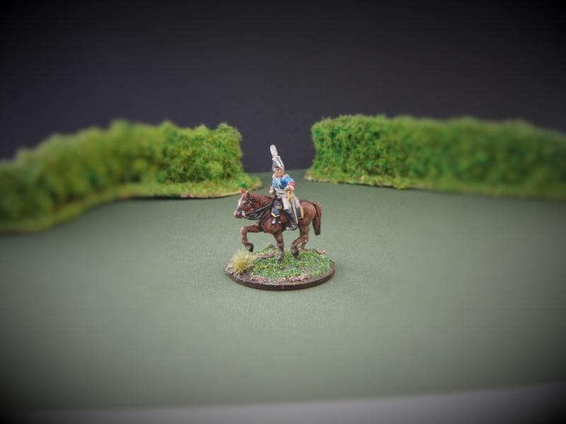 Après l'infanterie, la cavalerie!! W2110