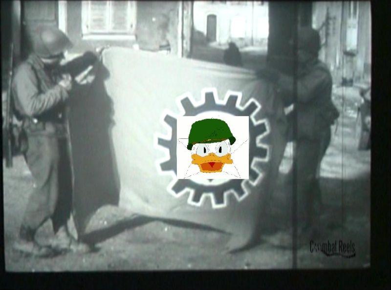 drapeau DAF Sans_t11