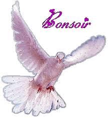 Bonjour -Bonsoir du mois d'Aout  - Page 6 Bs913