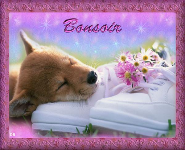 Bonjour -Bonsoir du mois d'Aout  - Page 4 C80e6d10