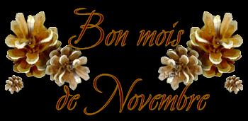 Bonjour -Bonsoir du mois de Novembre   Pw-3ut10