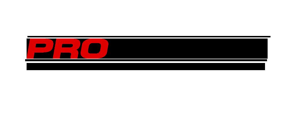 Formación de Equipos y pilotos R1 - Página 2 Logo_p12