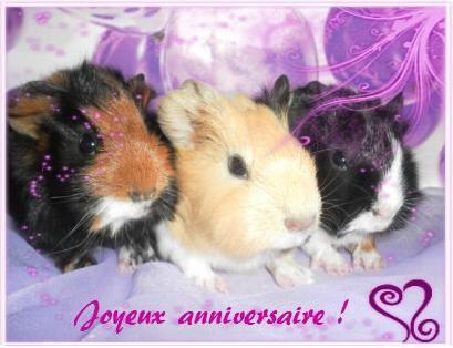 20 décembre 2012 Bon anniversaire Aurore 4311dc10