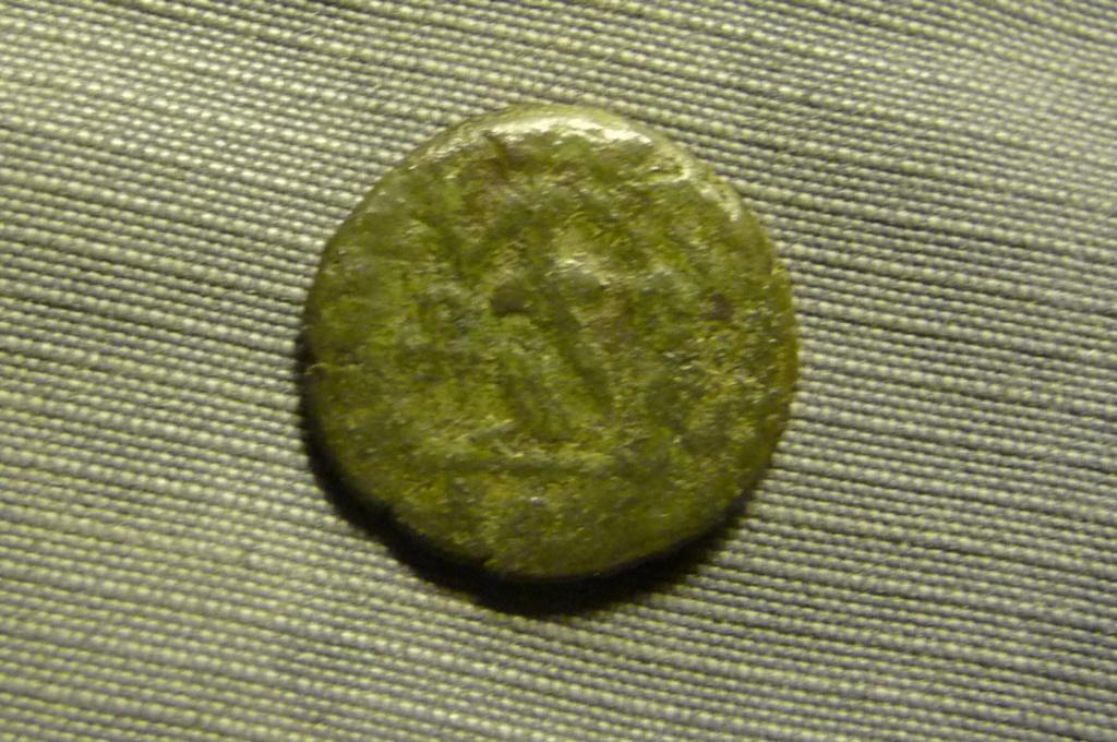 Petit bronze 1 à id svp. P1080212