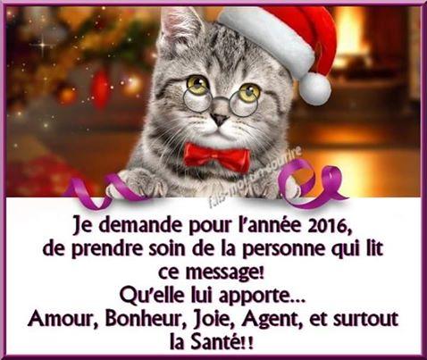 Bonne année !!!....on l'espère... - Page 3 201610