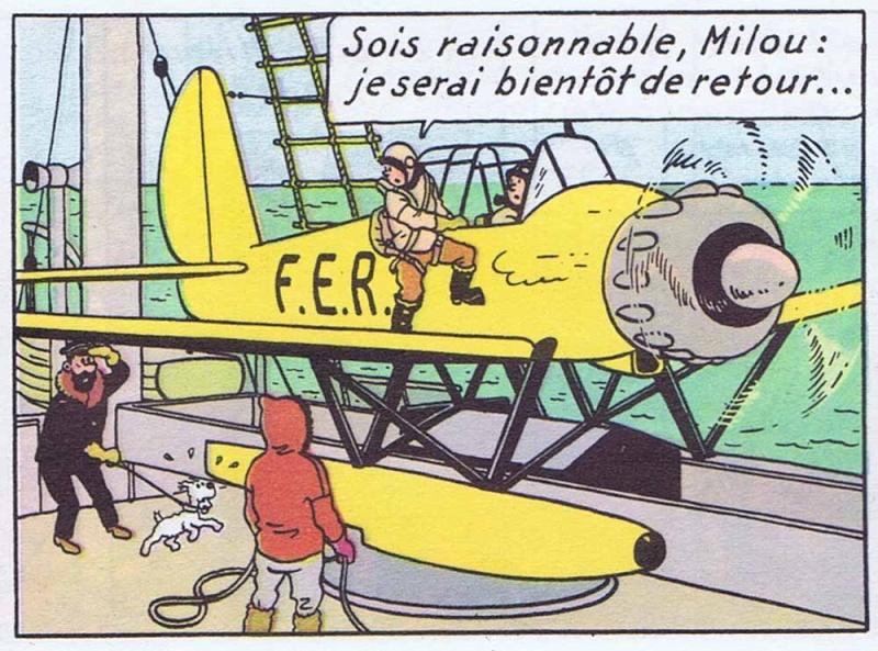 """Arado de """"L'étoile mystérieuse"""" au 1/32 par Tournesol Vignet10"""