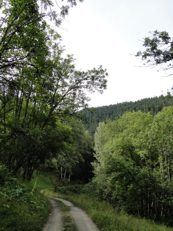 Bozel - la Dent du Villard - lac de la Rosière Dsc03638