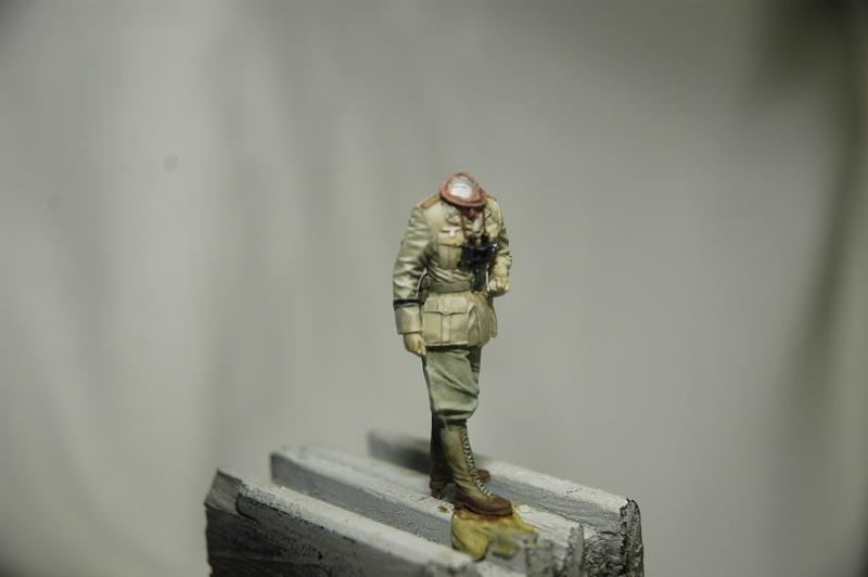 Officier DAK Alpine 1/35 Offici10