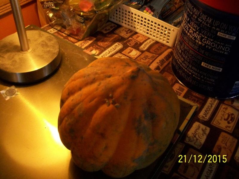 Potage au courgeron et lentilles 2015-146