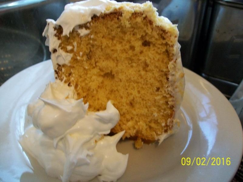 Gâteau à la crème glacée fondue 2016-021