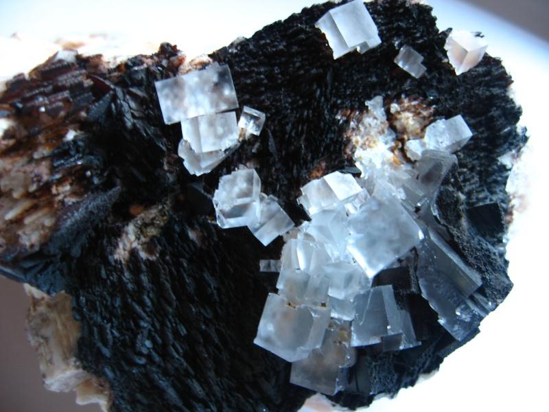 Différentes fluorites de la mine CLARA 00612