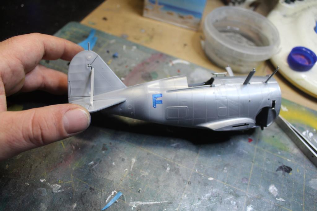 Grumman F-3F  Revell 1/32 - Page 5 Img_1921