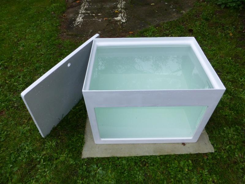 Mon nouveau projet d'aquarium polyester : 1482 l d'eau douce P1050411