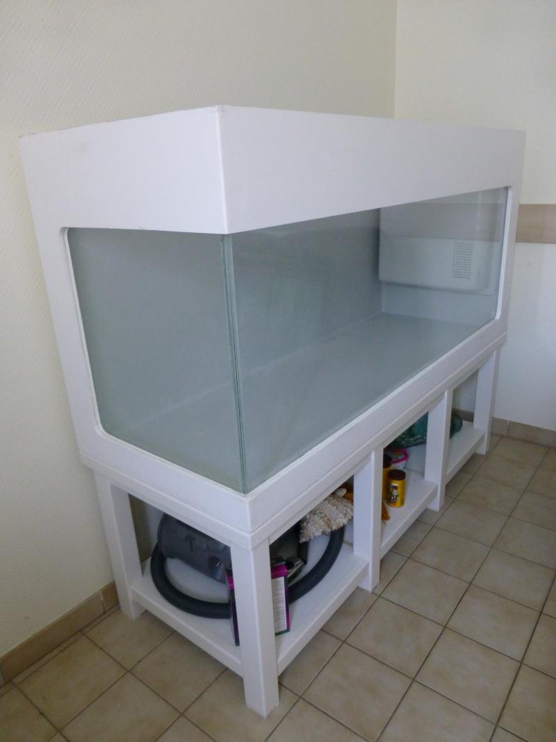 Mon nouveau projet d'aquarium polyester : 1482 l d'eau douce P1050613