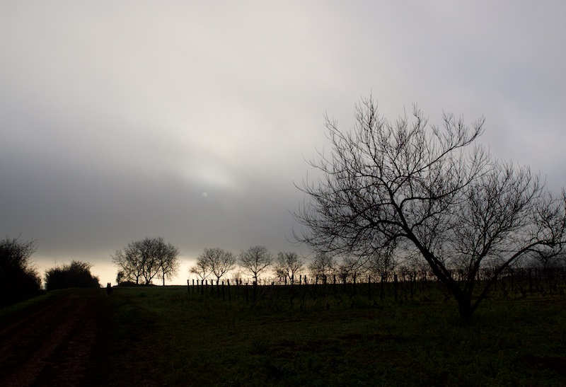 Au matin Atinm_10