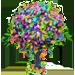 Vous cherchez un arbre ? Venez cliquer ici !!! Aprico10